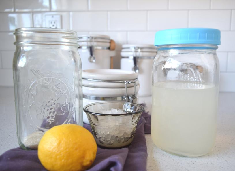 ingredients for water kefir