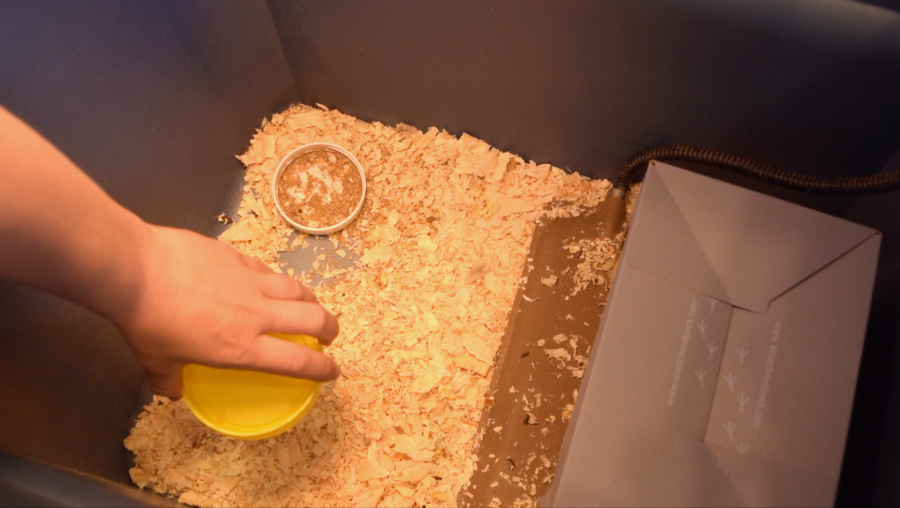 adding water to chick brooder